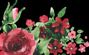 Floral para Baixar Marsala