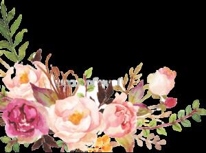 Floral para Baixar Rosa